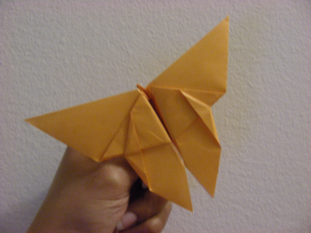 How to make an origami butterfly : video · CleverHumanity - photo#20